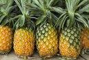 Pineapple Allergy & Bromelain