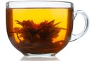 Green Tea & the Nervous System