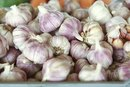 Raw Garlic & Bloating