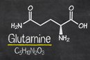 Glutamine and Your Blood Sugar