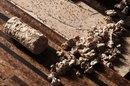 Resilient Cork Flooring for Exercise