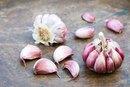 Herbal Remedies for Aspergillus