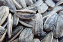Sunflower Seed Nutrition Facts