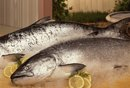 Canned Salmon and Metal Toxins