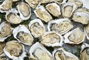 Zinc Content Amount in Oysters