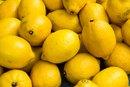 Citric Acid in Lemons