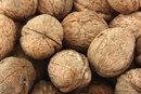 Lower Stomach Pain and Walnuts