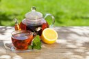 Herbal Remedies for Iron Toxicity
