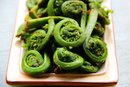 Fiddlehead Ferns Nutrition