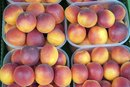 How to Freeze Nectarines