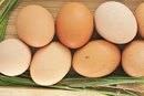 An Egg-White Diet to Lose Weight Quickly & Build Muscle