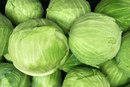 Benefits and Side Effects of Cabbage Juice