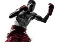 Ways to Tell If You Are Ready to Turn Pro in Boxing