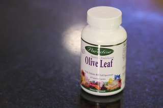 What Are the Health Benefits of Olive Leaf Supplements?