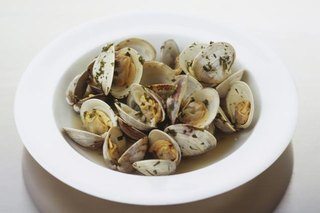 Do Clams Cause Arthritic Reactions?