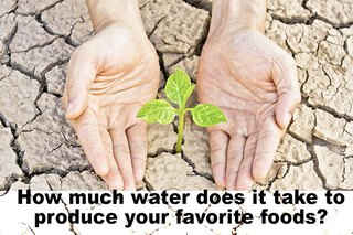 How California's Drought May Impact Your Diet