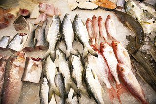 The effects of soil pollution on humans livestrong com for Kinds of fish to eat