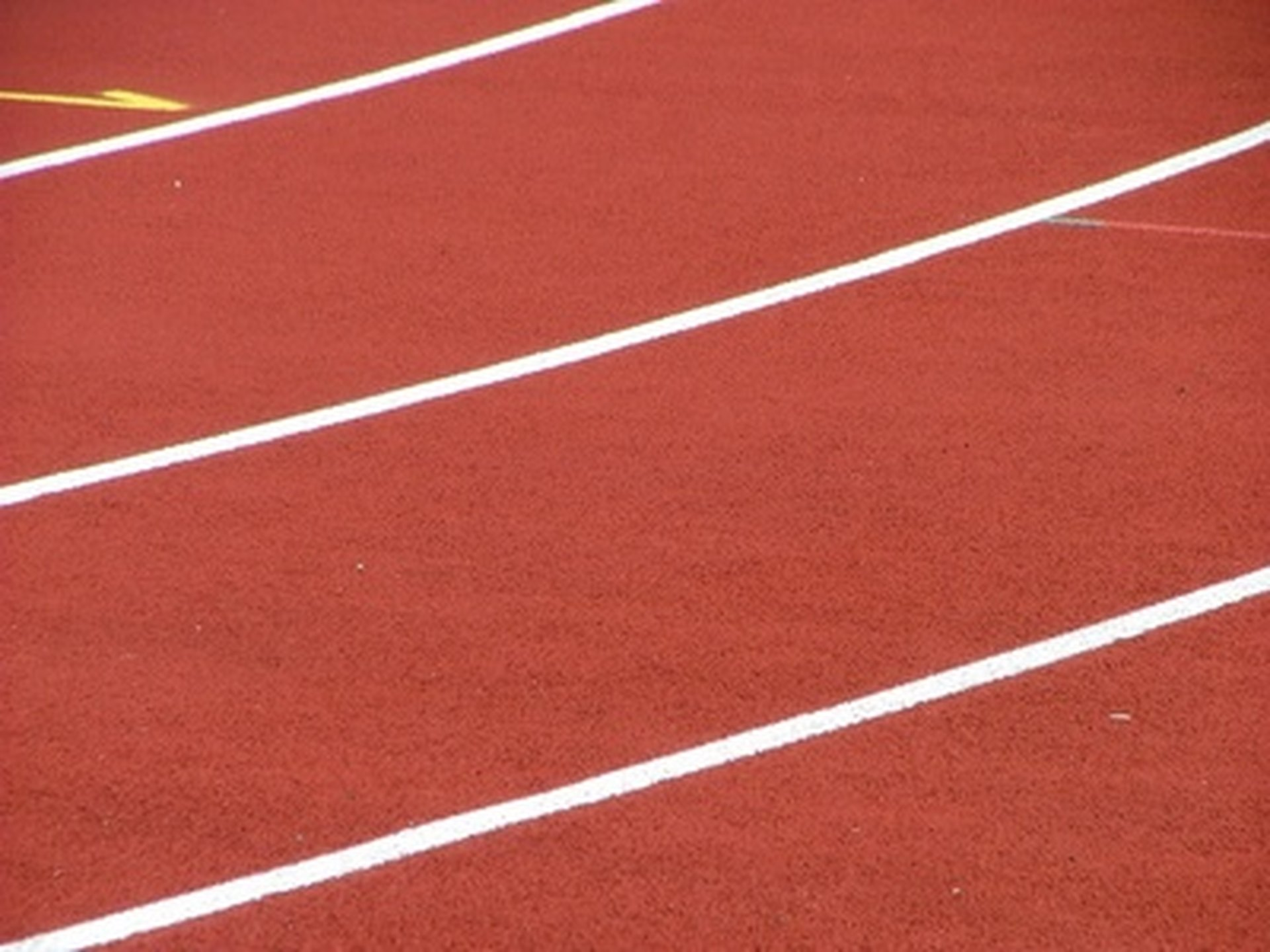 What Are The Rules For 100m Sprint Basic Skills In Relay Race