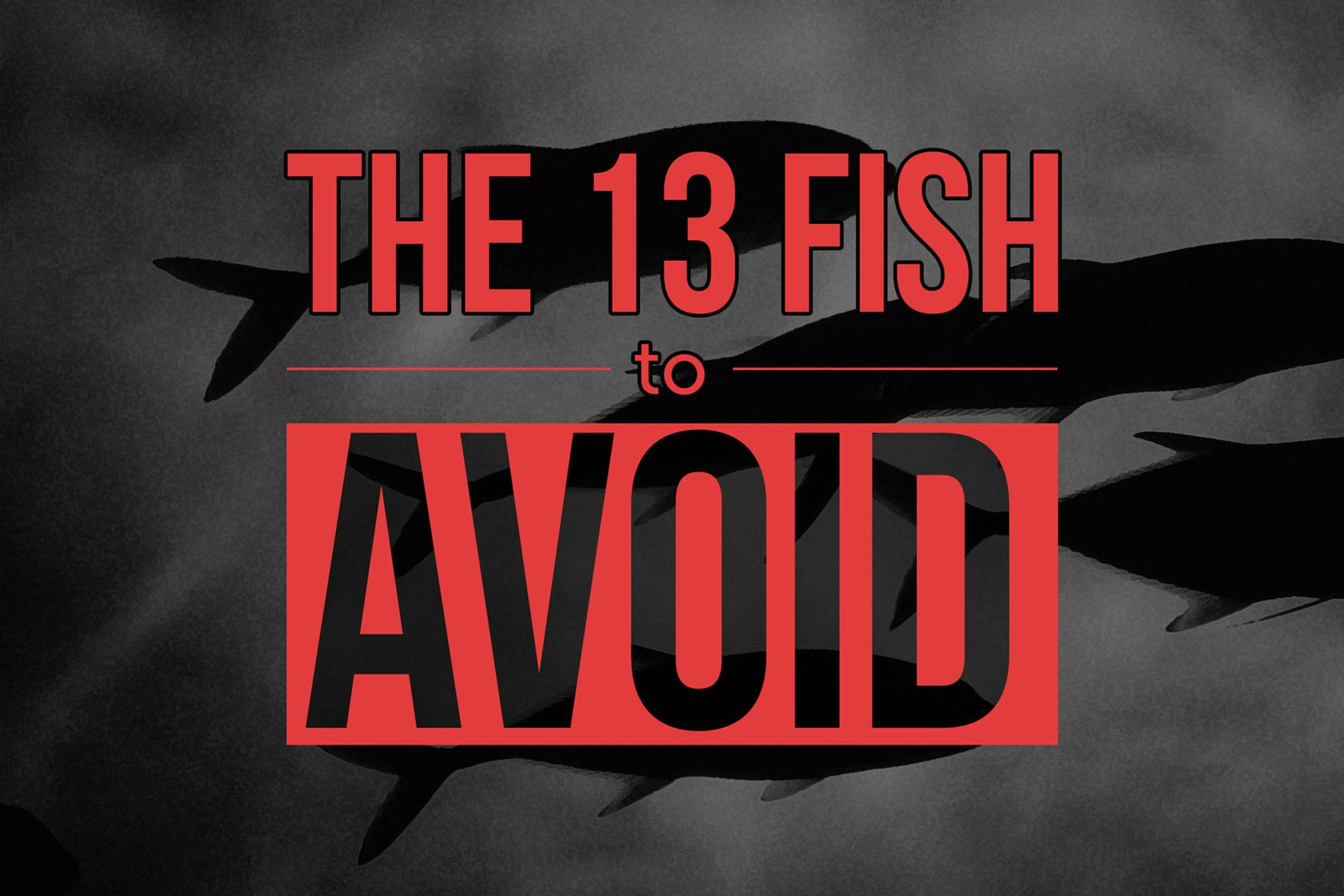 13 Types of Fish to Avoid Eating | LIVESTRONG.COM