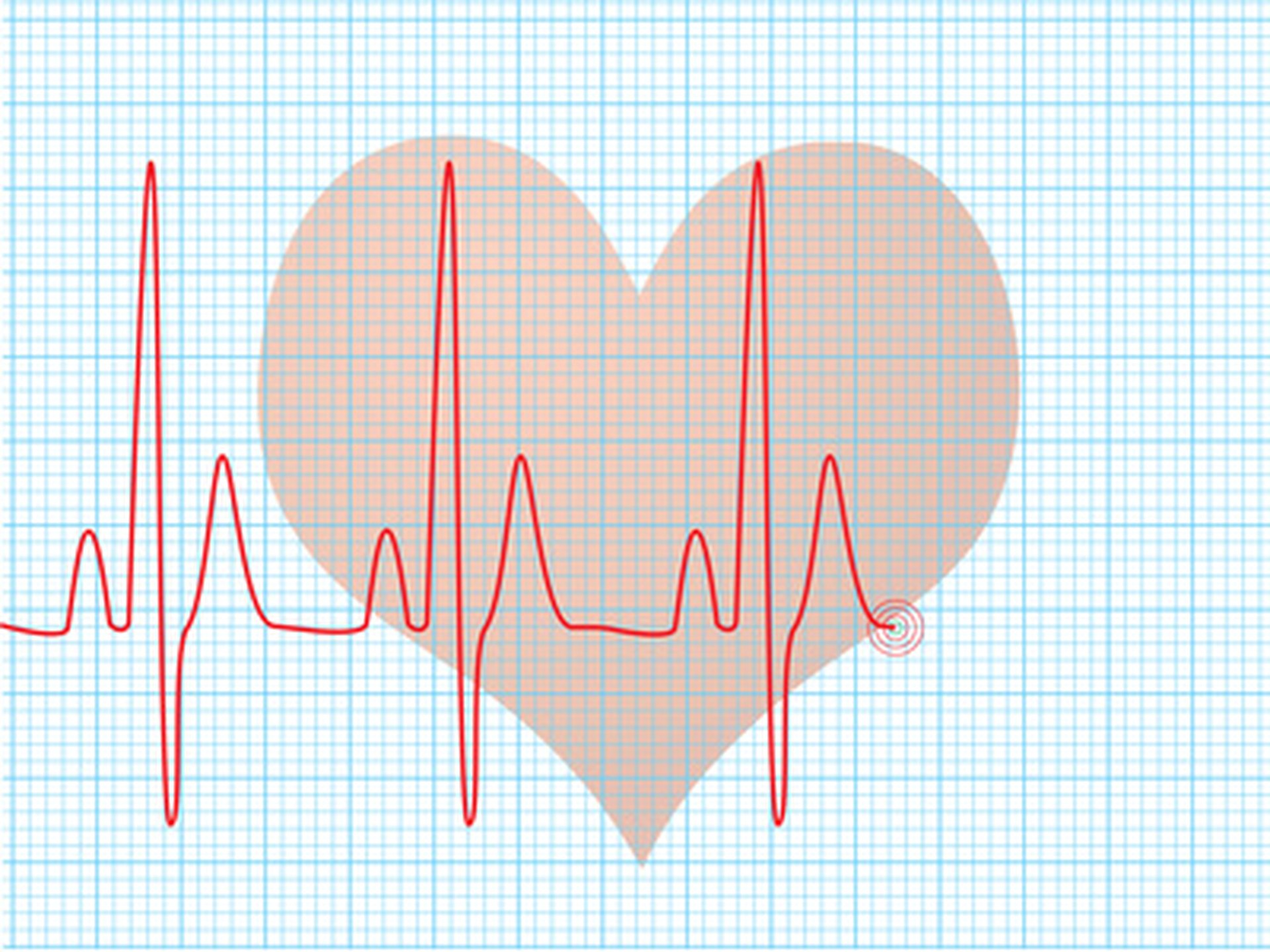 A Baby s Heart Rate During Pregnancy