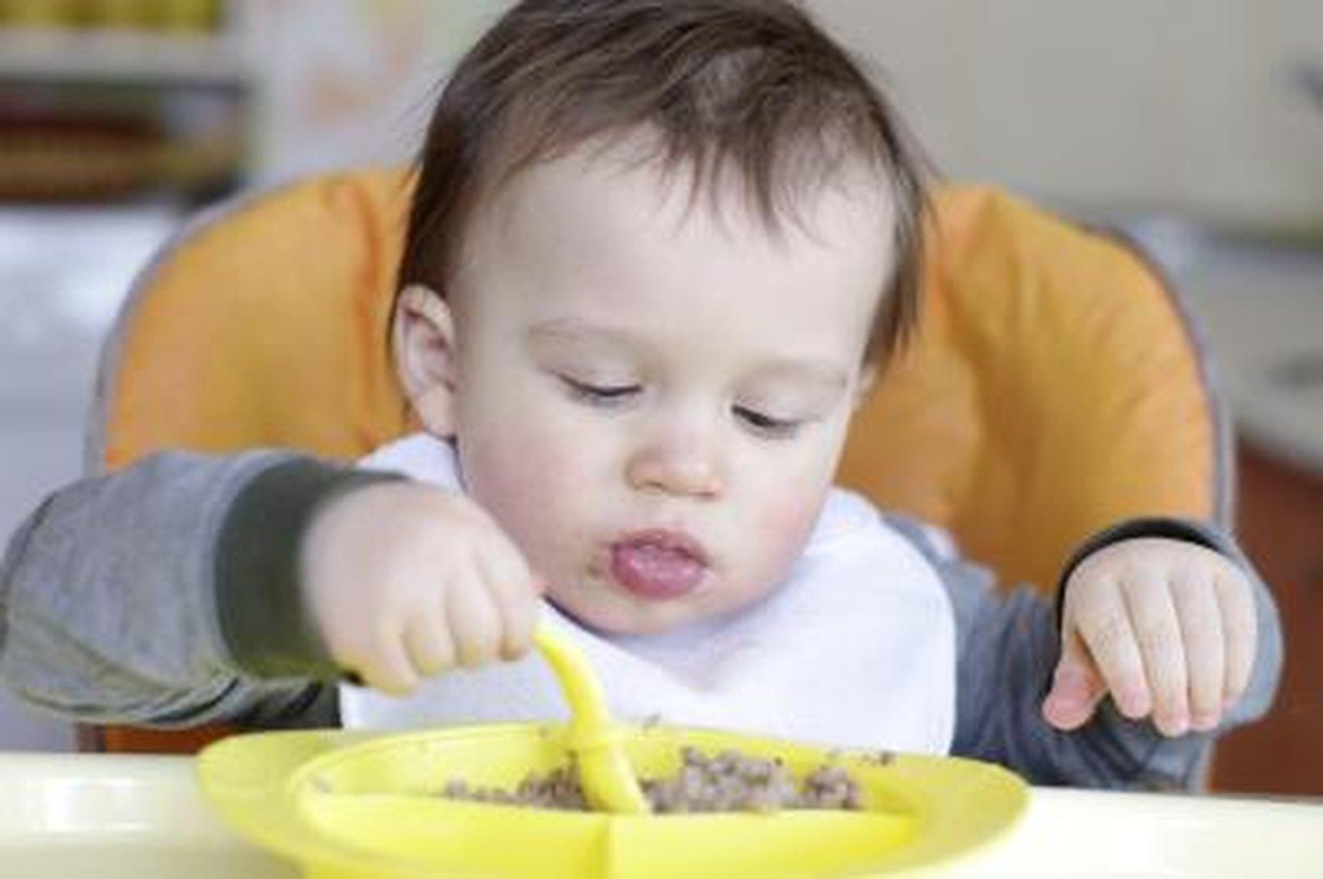 Finger Foods for 11 Month Old Babies