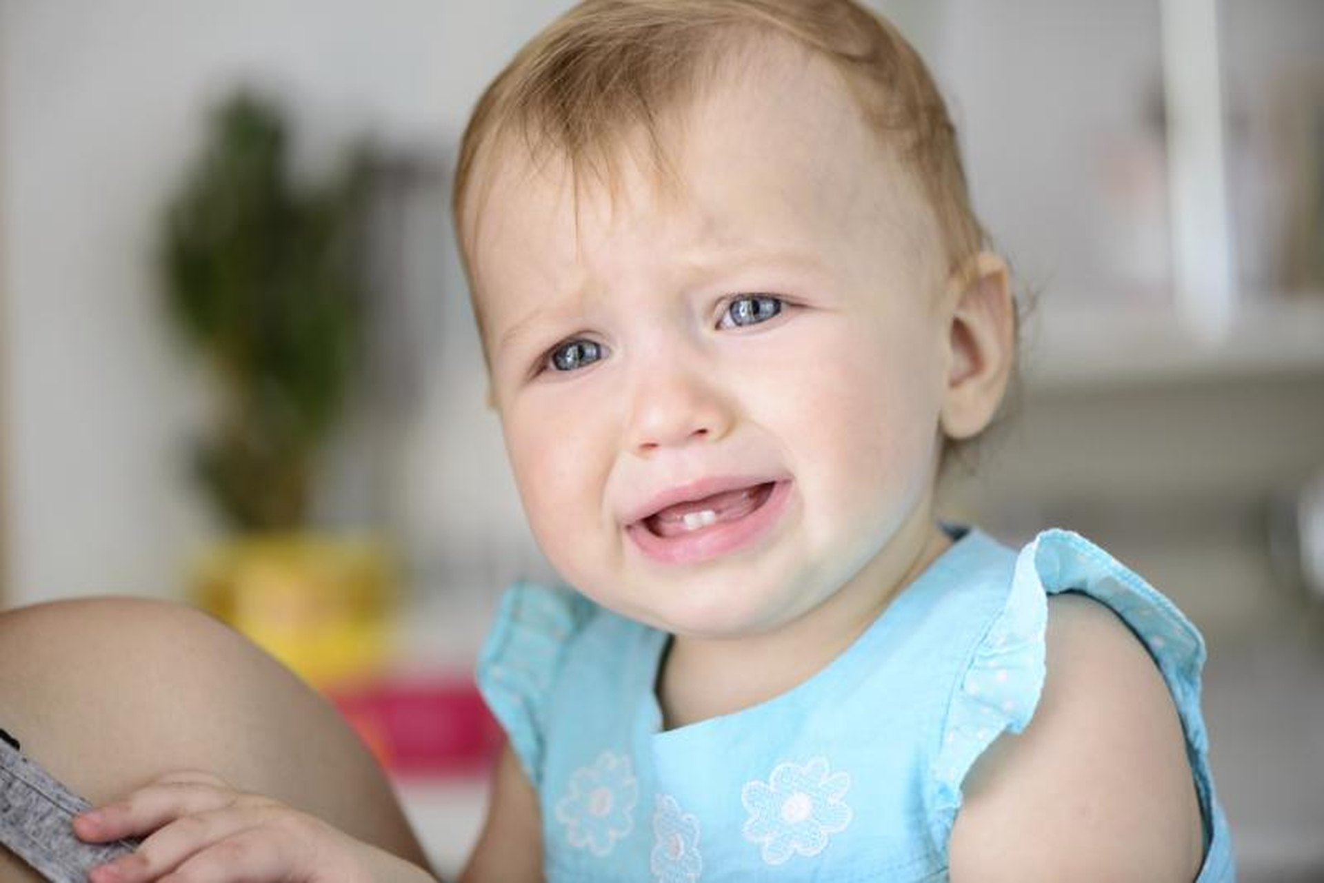 Baby teething procedure (SCHEME)