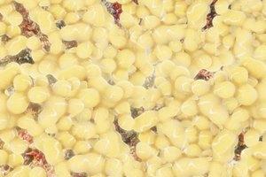 Best Foods For Lipoma Uk