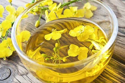 6. Genetically Modified (GM) Canola Oil