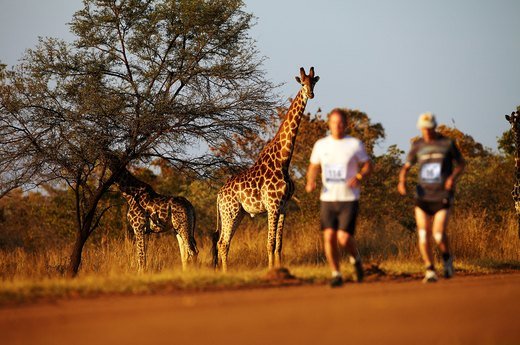 10. Big Five Marathon (June)