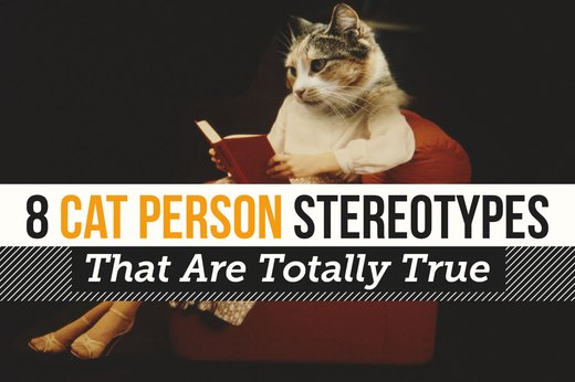 8 Cat Person Stereotypes That Are Totally True