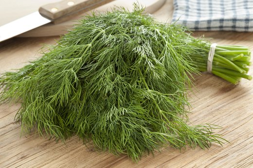 8. Dill