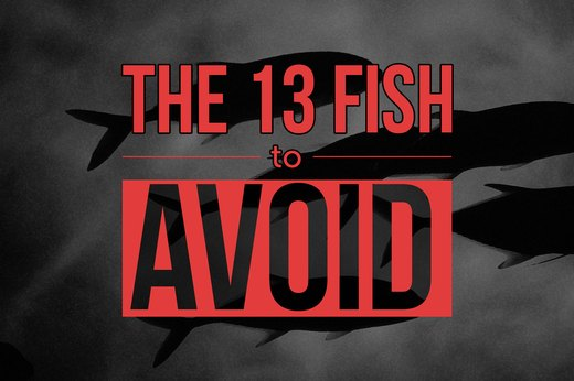 13 types of fish to avoid eating livestrong com for Types of white fish to eat