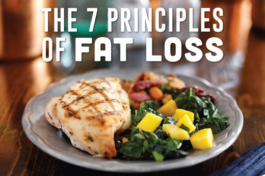 The 7 Principles of Fat Loss