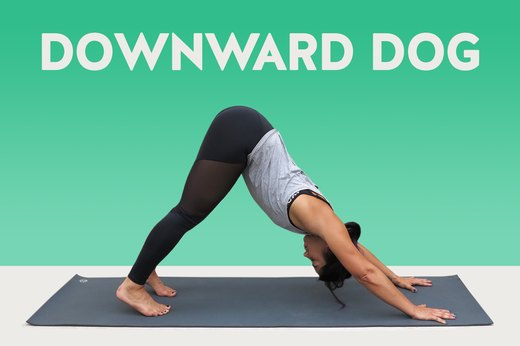 13. Downward Dog