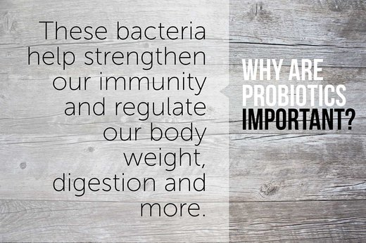 Why Are Probiotics Important?