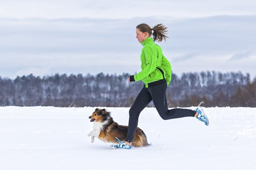 For Offroad Runners: Trail-Running Pooches