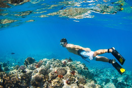 7. Snorkel at the Great Barrier Reef (or Just Go Snorkeling)