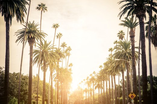 20. Los Angeles, California